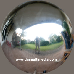 Garden Mirror Ball Image